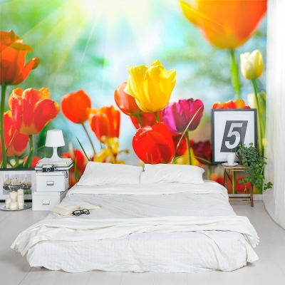 Office tulip wall mural