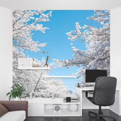 Cherry Blossom wall mural