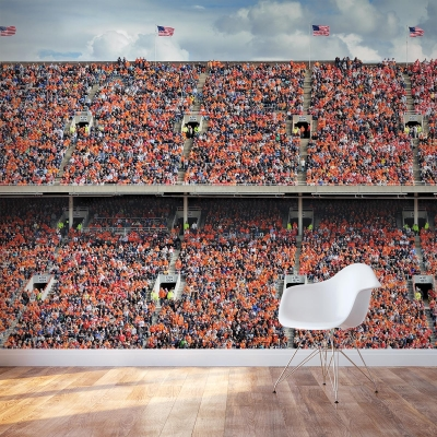 Orange Stadium Wall Mural