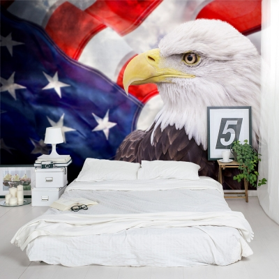 American Bald Eagle Bedroom Wall Mural