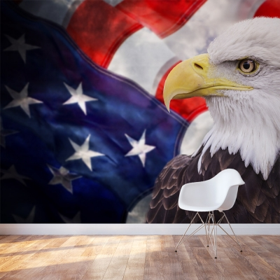 American Bald Eagle Accent Wall Mural
