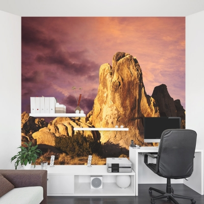 Mojave Desert Sunrise Wall Mural Office