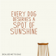 Every Dog Deserves...Wall Quote Decal